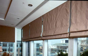 Low Price Blackout Roman Blind pictures & photos