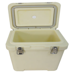 Plastic Lunch Box with Tray for Kids pictures & photos