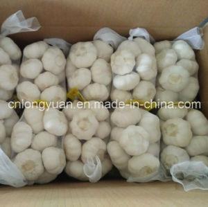 2017 New Fresh White Garlic pictures & photos