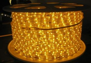 5050 60LED/M 220V 14.4W LED High Voltage Flexible Strip pictures & photos