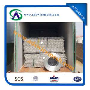 Electro Galvanized Hexagonal Steel Wire Mesh/Steel Hexagoanl Mesh pictures & photos