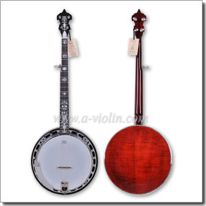Remo Head 5 String Banjo (ABO245HH-4) pictures & photos