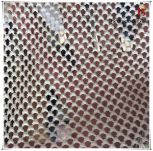 Polyester Mesh Fabric for Garments for Sportwear pictures & photos
