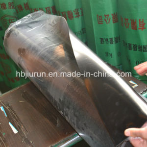 Industrial Corrosion Resistance Viton Rubber Plate pictures & photos