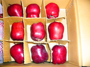 High Quality China Fresh Huaniu Apple pictures & photos
