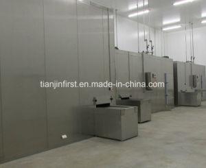 China Manufacturer Tuna Dumpling Quick Freezer pictures & photos