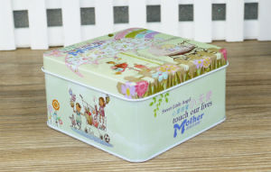 Square Metal Case Food Tin Container pictures & photos