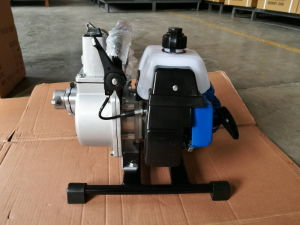 Gasoline Water Pump with 1e40f-6 Engine (QGZ2-30) pictures & photos