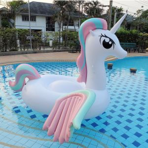 Inflatable Rainbow Colorful Pegasus Unicorn Pool Toy pictures & photos