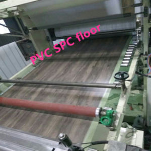 Processing Additive for PVC Foaming Products pictures & photos