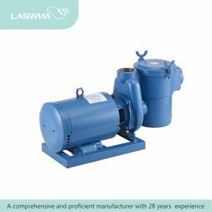 Laswim Brass Pool Pump pictures & photos