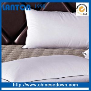 Wholesale 5 Star Hotel Standard White Goose Down Pillow pictures & photos