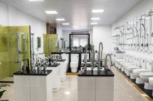 Ceramic Sanitary Ware Freestanding Wash Basin Bathroom Counter Basin (7015) pictures & photos