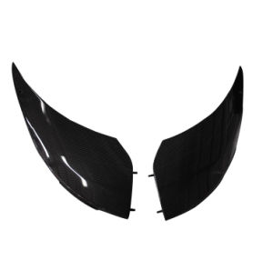 Carbon Fiber Front Access Panel for Lotus Elise pictures & photos