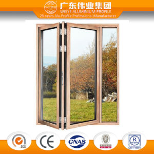 Strong Double Glazing Commercial Frameless Glass Folding Doors pictures & photos