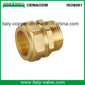 OEM&ODM Quality Forged Brass Union (AV-BF-7023) pictures & photos