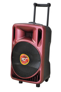 10 Inches Multimedia Trolley Outdoor Speaker with Battery pictures & photos