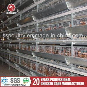 Poultry Farming Equipment H Type Layer Chicken Cage with Poultry Feeder pictures & photos