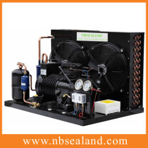High Efficient Outdoor Condensing Unit for Cold Room pictures & photos