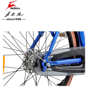 700C City Aluminum Alloy Frame 250W Brushless Motor Electric Bicycle pictures & photos