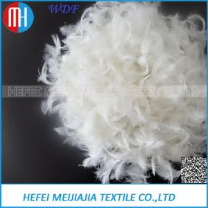 100% Washed White Small Goose/Duck Feather with 4-6cm, 2-4cm. pictures & photos