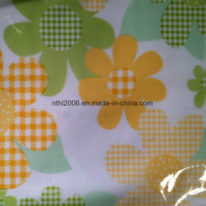 PVC Film Printing Vinyl Roll pictures & photos