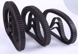 T Type T5 / T10/ At5/ At10/ Dt5/ Dt10/ XL/ L/ H or Customized Synchronous Rubber Endless Timing Belt pictures & photos