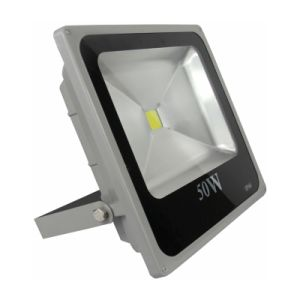 Good Price IP65 50W Driverless LED Flood Light pictures & photos