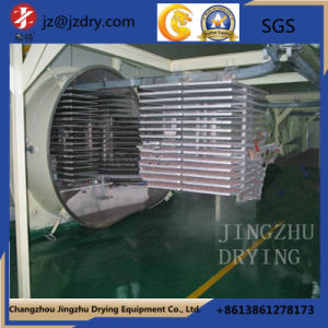 Stainless Steel Fzg Square Static Vacuum Dryer pictures & photos