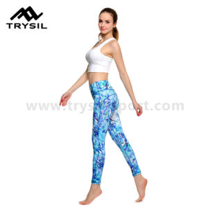 Sexy Women′s Gym Wear Yoga Long Pants Low Price pictures & photos