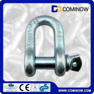 Us Type G210 Screw Pin Anchor Shackle / Us Type Dee Shackle / High Tension Dee Shackle pictures & photos