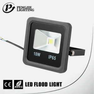 Resistant to Corrosion COB 10W Waterproof IP65 Long Lifespan Flood Lights LED pictures & photos