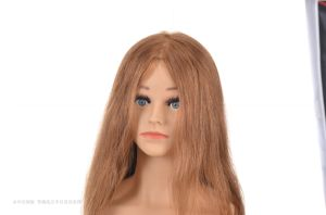 Human Hair Training Head Real Hair Mannequin Head for Training pictures & photos
