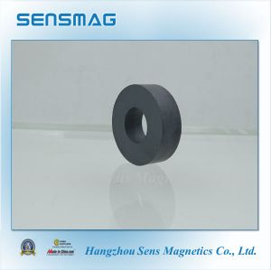 C5~C8a Permanent Ferrite Magnet Ring Magnet for Motor pictures & photos