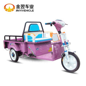 Electric Passenger Tricycle pictures & photos
