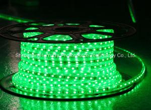 Blue Color 60LEDs SMD5630 220V IP65 LED Rope Light pictures & photos
