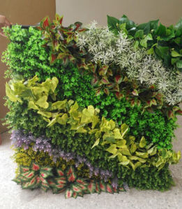 New Design Good Quality Artificial Green Wall pictures & photos