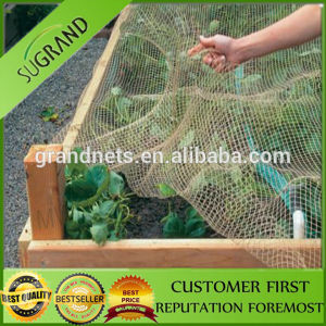 High Strength Polyethyleneanti Bird Net pictures & photos