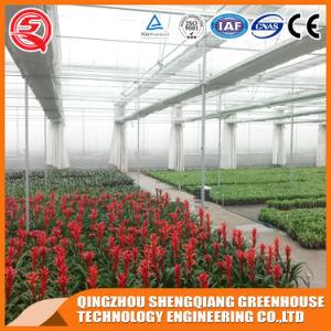 Vegetables/Garden/Flowers/Farm Film Greenhouses pictures & photos