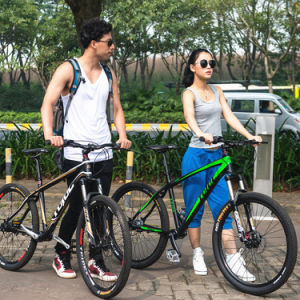 Taiwan Shaft Drive Bicycle Mountain Bike with Disc Brake / Full Suspension Mountain Bike / MTB with Bell pictures & photos