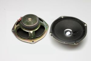 Fbs118A Popular Hot Sell 118mm Cheaper Big Loudspeakers 5W (FBELE) pictures & photos