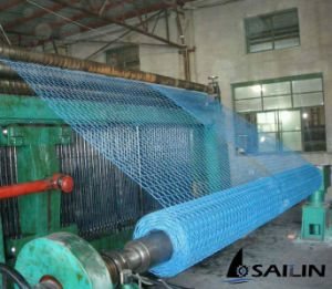 Sailin PVC Coated Wire Netting pictures & photos
