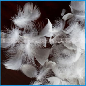 2-4cm Washed White Goose Feather Filling for Pillow pictures & photos