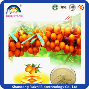 Herbal Extract Sea Buckthorn Berry Fruit Oil Softgel pictures & photos