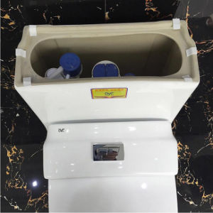 Ovs Foshan Sanitary Ware Ceramic Water Closet with Self-Clean Nano Glaze pictures & photos