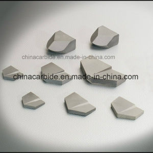 Tungsten Carbide Tip for Forestry Mowers Mulcher Teeth pictures & photos