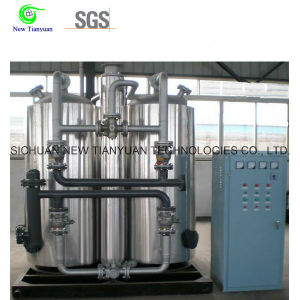 CNG Compressed Natural Gas Manual Control Type Dehydration/Drying Equipment pictures & photos