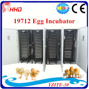 Large Automatic Egg Incubator for 20, 000 Chicken Eggs pictures & photos