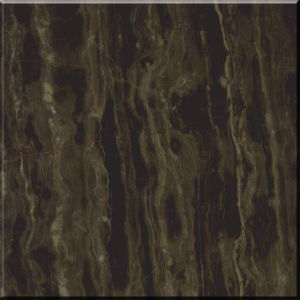 Coffee Color Marble Tile for Flooring and Walling pictures & photos