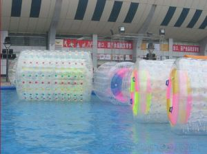 Durm on Water/Water Park (ZY-3610)